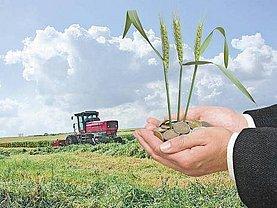 Teren agricol de vânzare, în Oradea, zona Exterior Sud
