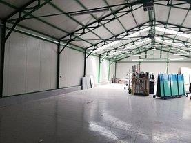 Închiriere spaţiu industrial în Deva, Depozitelor