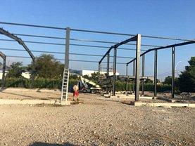Închiriere spaţiu industrial în Deva, Zarand