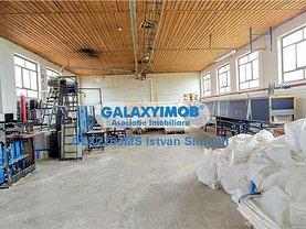 Închiriere spaţiu industrial în Targu Mures, Central