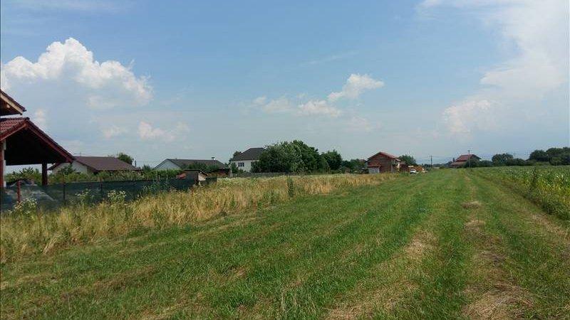 Vanzare teren cu toate utilitaile, Stupini, Brasov