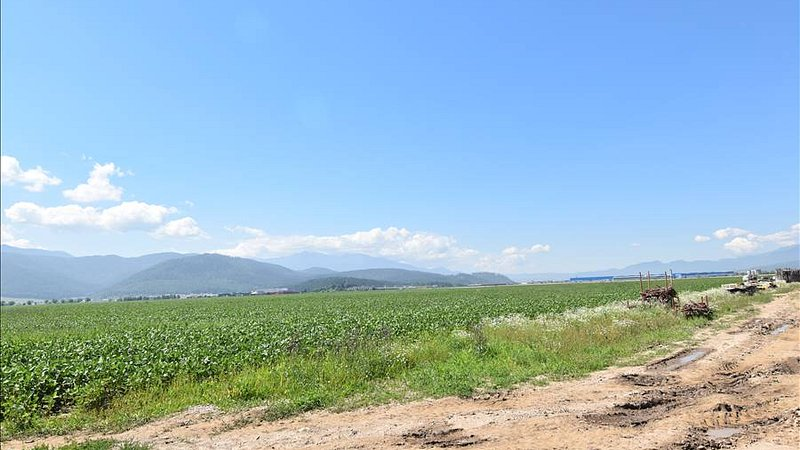 Vanzare teren pentru dezvoltare imobiliara / case. Ghimbav, Brasov