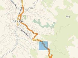 Licitaţie teren pasune, în Zalau, zona Sud