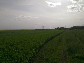 Teren agricol de vânzare, în Arad, zona Sud-Est