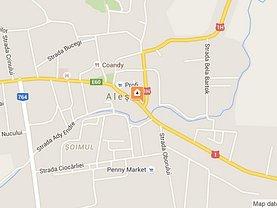 Licitaţie teren agricol, în Alesd, zona Central