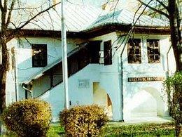 Casa de vânzare 10 camere, în Botosani, zona Central