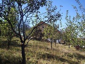 Casa 4 camere în Bistrita, Viisoara