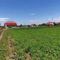 Teren constructii de vânzare, în Braşov, zona Stupini