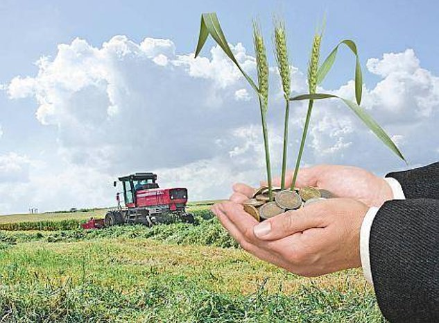 Teren agricol de vanzare- 250 ha compact, irigabil - imaginea 1