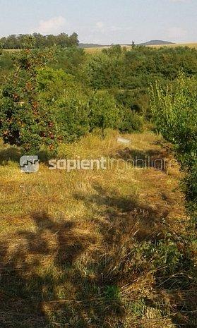 Sapient/Casa in comuna Tetchea - imaginea 1