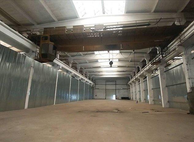 Hale de productie cu pod rulant, suprafata dorita de catre client - imaginea 1