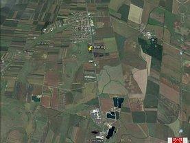 Teren agricol de vânzare, în Şofronea, zona Central