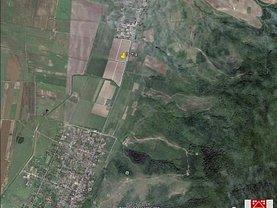 Teren agricol de vânzare, în Covăsinţ, zona Central