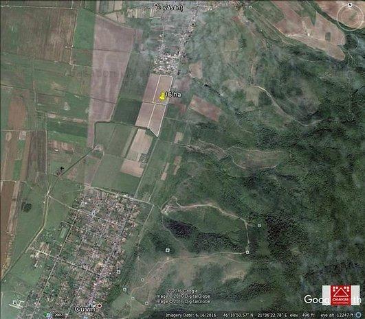 16 ha teren agricol la sosea, Covasant - imaginea 1