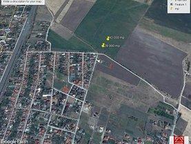 Teren agricol de vânzare, în Arad, zona Grădişte