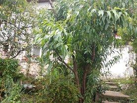 Casa de vânzare 3 camere, în Targu Mures, zona Calea Sighisoarei
