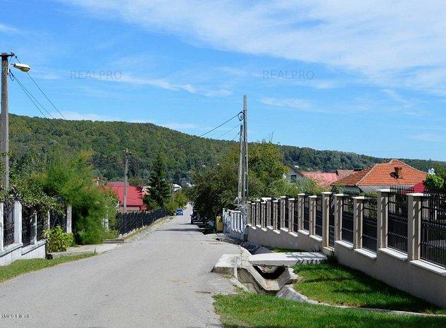 Bascov- Valea Ursului Han - teren 3109 mp parcelat in 5 loturi. - imaginea 1