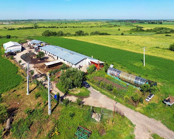 Ferma 25km De Bucuresti, Canalizare Industriala, 380V, 220V, 1Ha Intravilan - imaginea 1
