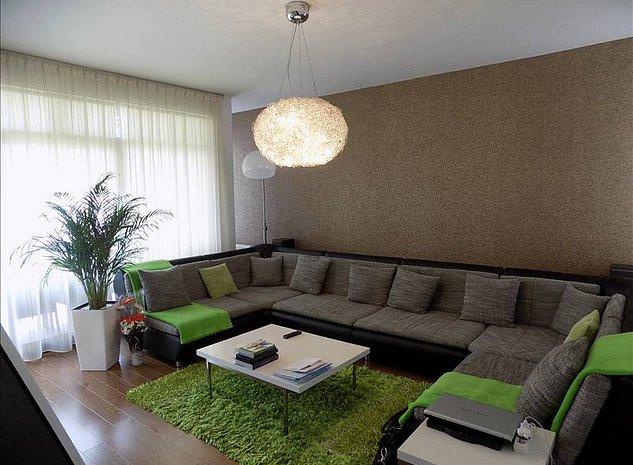 Vila moderna in Mircea ce Batran, mobilata si utilata - imaginea 1