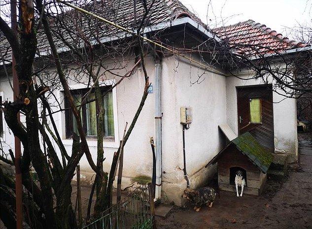 Teren si Casa in Zonz Stadion Dan Paltinisanu - imaginea 1