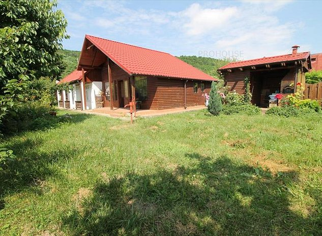 Hemeiusi - Andriesesti - casa renovata - imaginea 1