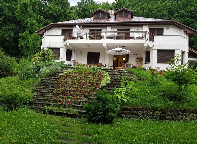 Vanzare Vila Luncani, Bacau - imaginea 1
