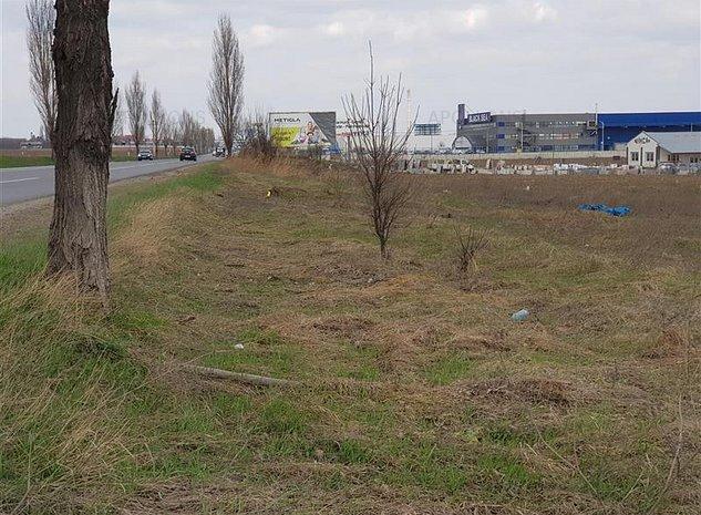 Teren comuna Nicolae Balcescu - imaginea 1