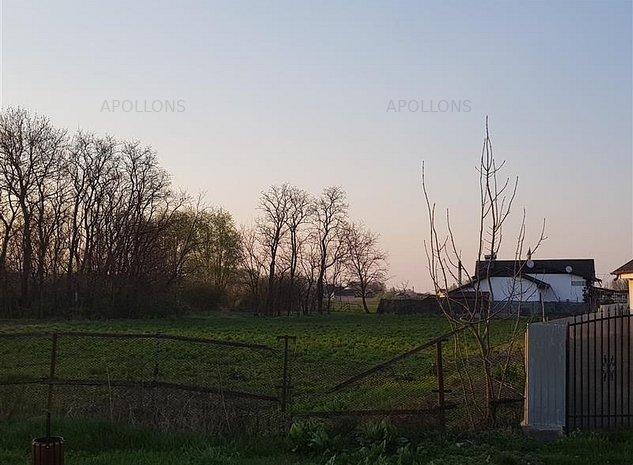 Vanzare Teren Saucesti, Bacau deschidere 34 m - imaginea 1