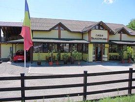 Vânzare spaţiu comercial în Filipesti, Central