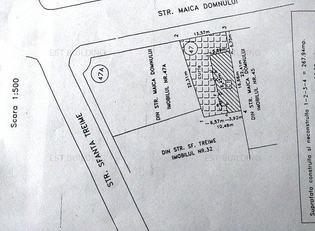 MAICA DOMNULUI-SF.TREIME STRADAL - imaginea 1