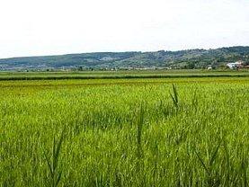 Teren agricol de vânzare, în Arad, zona Sud-Vest