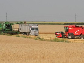 Teren agricol de vânzare, în Arad, zona Exterior Vest