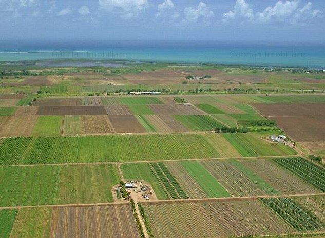 Vand  90 ha teren arabil, Arad, Chisinau Cris, sol cal 1 si 2 - imaginea 1