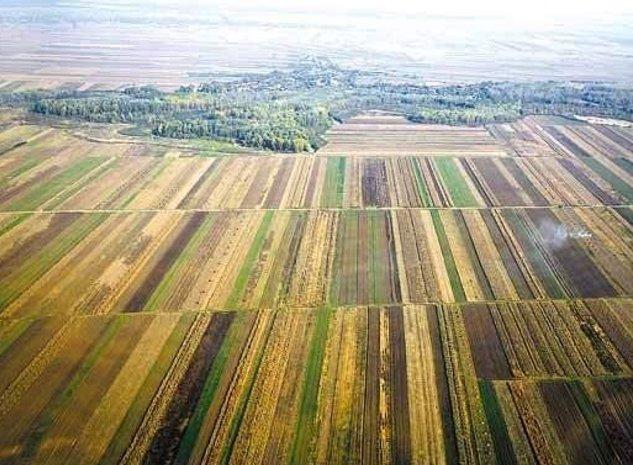 Vand  34 ha teren arabil  in  Arad, Cintei,34 ha,sol cal 1 - imaginea 1