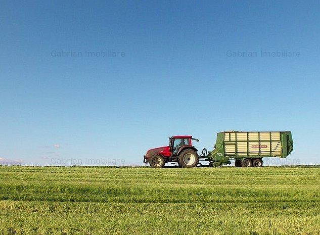 Vând 2900 de hectare de teren agricol cu trei ferme - imaginea 1
