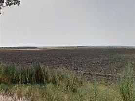 Teren agricol de vânzare, în Giurgiu, zona Central