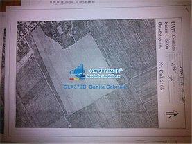 Teren agricol de vânzare, în Cernica, zona Central
