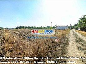Teren constructii de vânzare, în Bolintin-Deal, zona Central