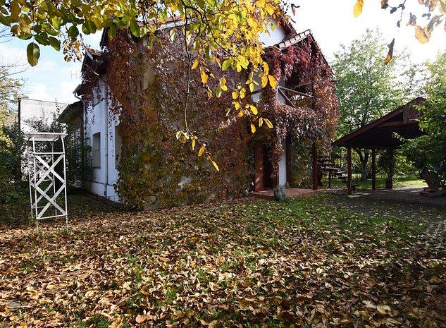 Casa individuala-Lipovei - imaginea 1