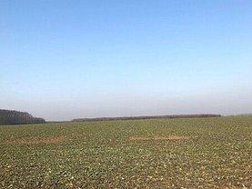 Teren agricol de vânzare, în Găneasa, zona Sud-Vest