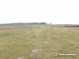 Teren agricol de vânzare, în Săliştea Nouă, zona P-ţa Mihai Viteazul