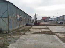 Vânzare spaţiu industrial în Dascalu