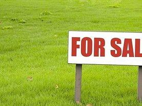 Teren constructii de vânzare, în Zimandu Nou
