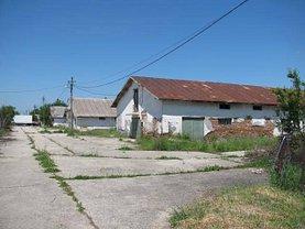 Închiriere ferma în Darasti-Ilfov