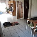 Apartament de vânzare 4 camere, în Bucuresti, zona Sebastian