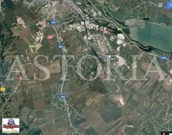 Teren Bradu , 6km de Pitesti - imaginea 1