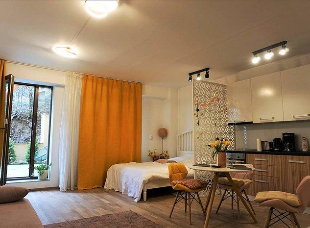Garsoniera , Seasons Residence , Brasov - imaginea 1
