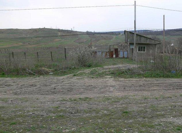 Vand teren 6170 mp in Vaslui, localitate Negresti - imaginea 1