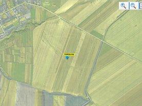 Teren agricol de vânzare, în Topolog