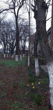 Grivița-Turda, 2 camere+hol locuibil in bloc gen vila, etaj 1/2, amenajat - imaginea 1